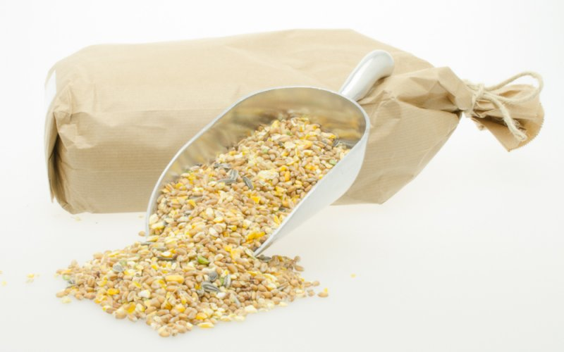 Gemengd graan met zonnepitten (1 kg)