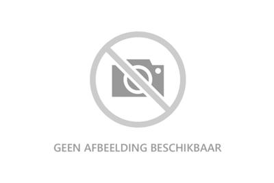 Gelderse rookworst 250 gram (per stuk)