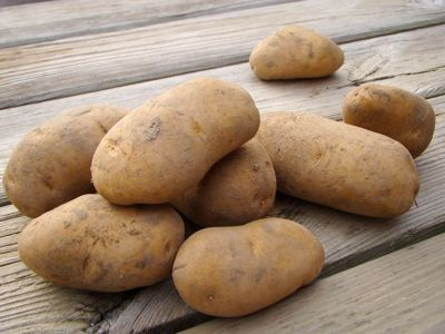 Aardappel Frieslander  (1 kilo)
