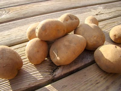 Aardappel Nicola (1kilo)