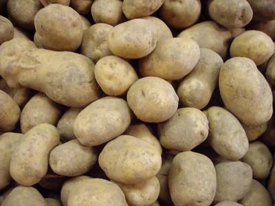 Aardappel 'Bintje' (1 kilo)