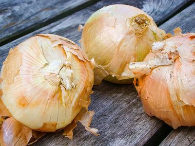 Uien Bonk nieuwe oogst (per kilo)