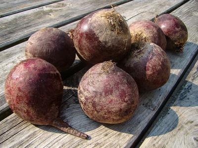 Rode Bietjes  (500 gram)
