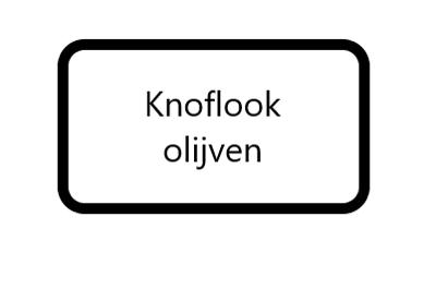 Knoflook Olijven, 125 gram