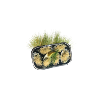Oesters Gratine