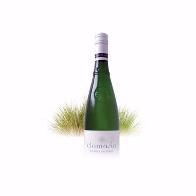 Witte wijn Picpoul de Pinet