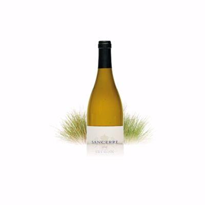 Witte wijn Pouilly Fumé