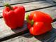 Paprika rood
