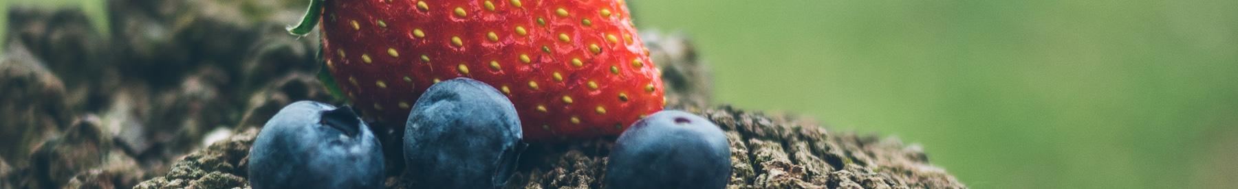 Biologisch fruit